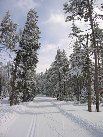 yosemite xc-skiing, feb 2005