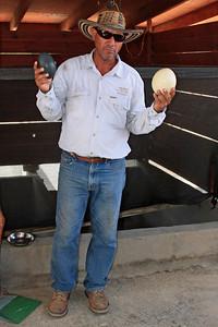 Ostrich Eggs - Aruba Ostrich Farm