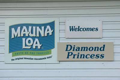Mauna Loa Store