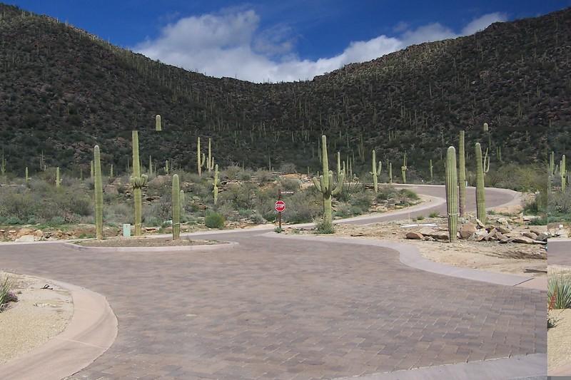 AZ Trip 009