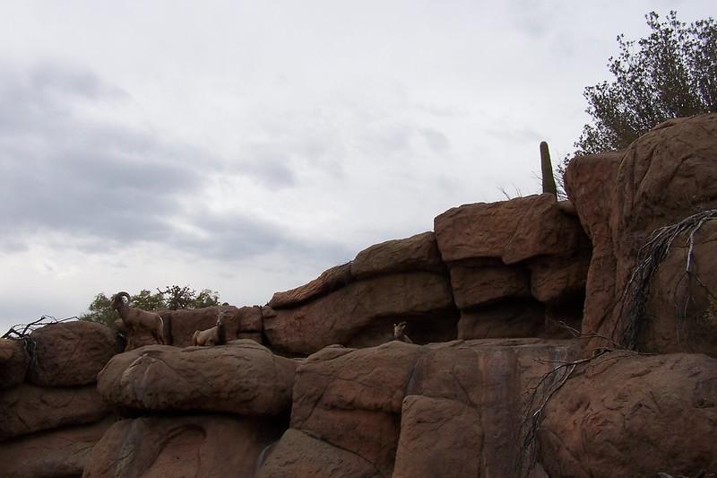Az Trip - Desert 035