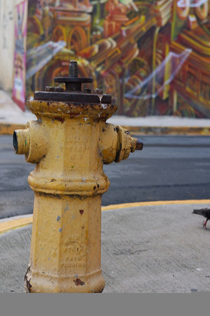 An uncommon hydrant