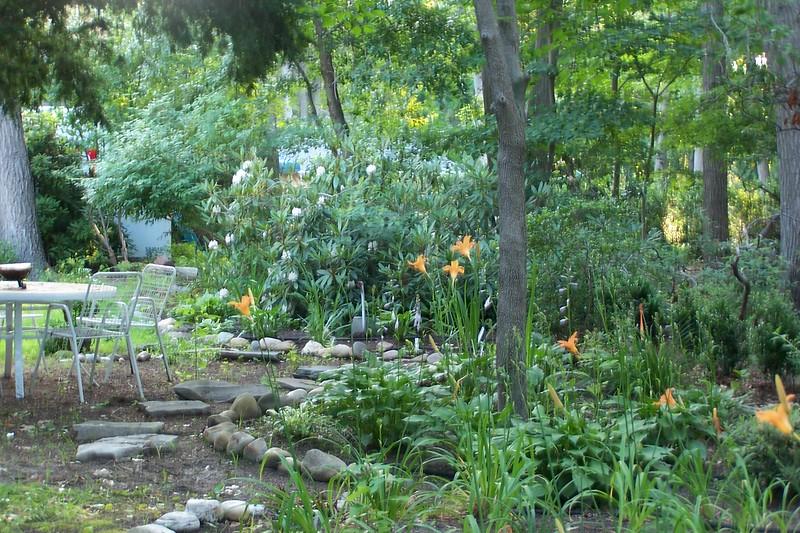 7-05 North Garden