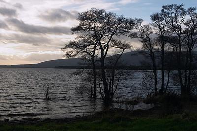 Exploring Loch Lomond