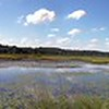 Quaker Pond Panorama