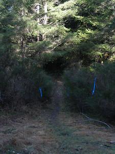 2005 Stewart Mountain 10-Mile XC - img0067.jpg