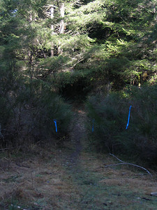 2005 Stewart Mountain 10-Mile XC - img0067.jpg