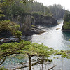 The view off Cape Flattery