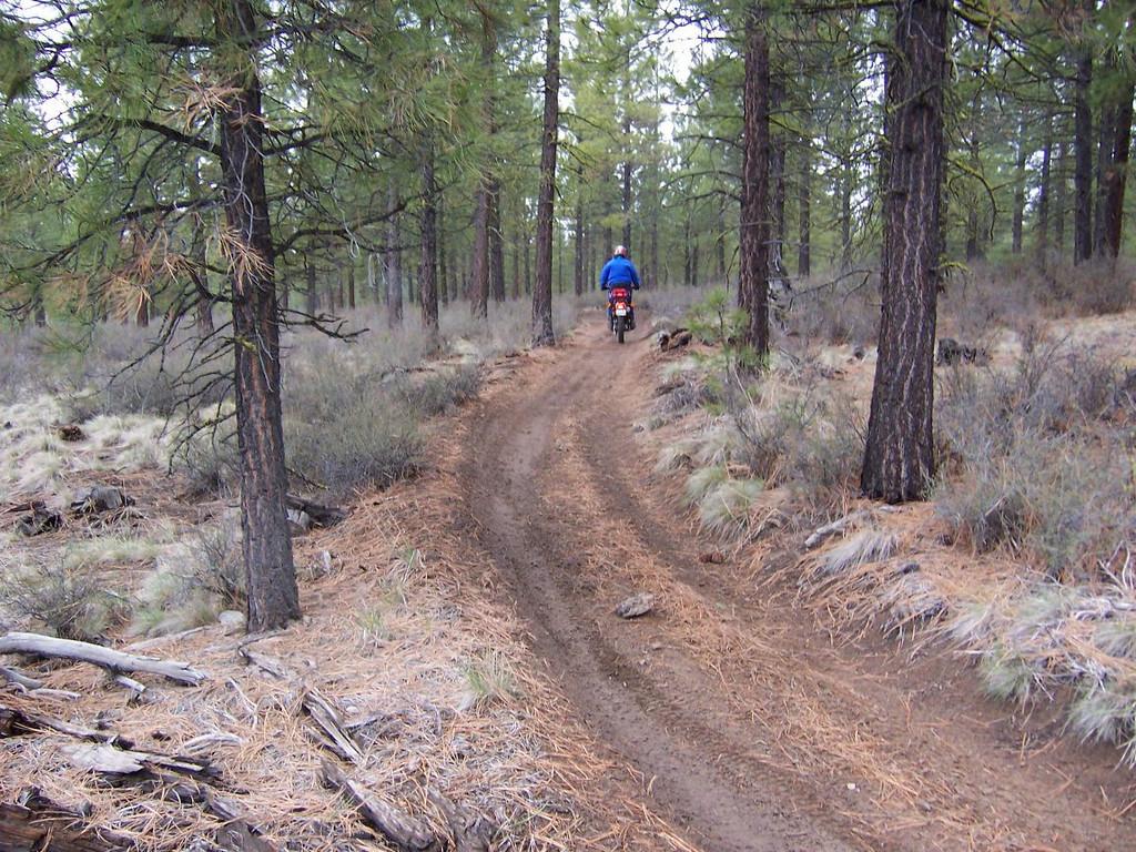 Big wide easy trails..