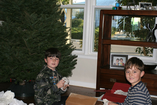 Decorating The Christmas Tree 2005