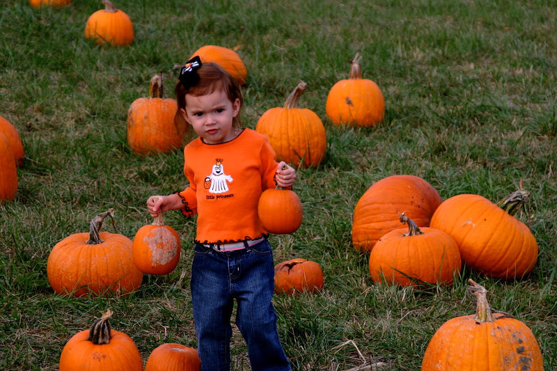 Pumpkin_Patch_2005_005