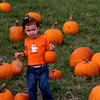 Pumpkin_Patch_2005_005