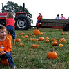 Pumpkin_Patch_2005_018