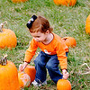 Pumpkin_Patch_2005_007