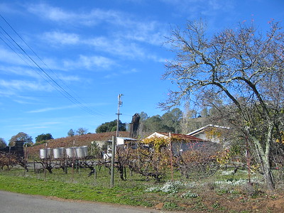 Frick Vinyards and San Francisco 2005 December