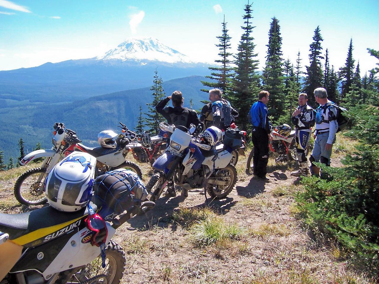 Mt. Adams from Hamilton Ridge trail.