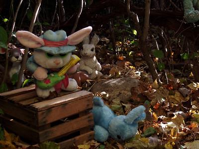 Peter Rabbit's House