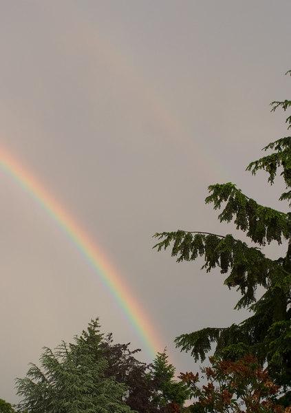 Rainbow closeup.