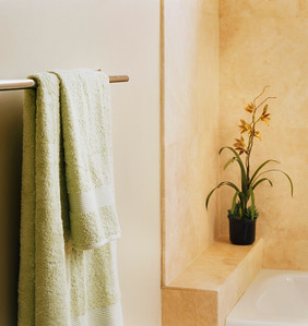 Contemporary Bathroom with Towel