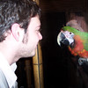 Billy talks to a parrot-friend