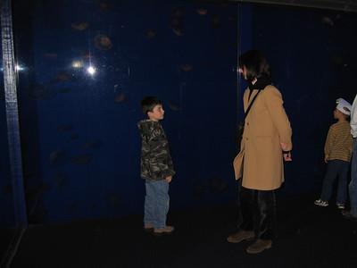 Monterey Acquarium With Noel