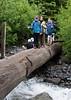 Crossing a log bridge.
