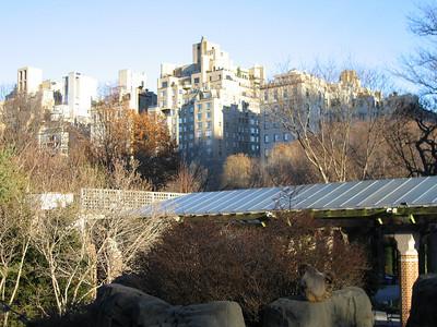NY NY central park south, seventh street.