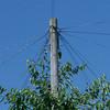 british telephone pole