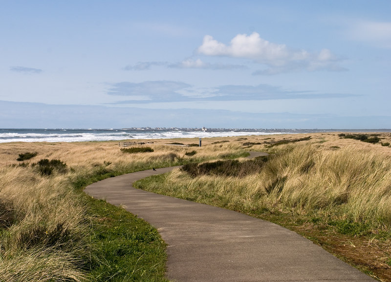 A path through the dunes, looking North to Point Brown and Ocean Shores.