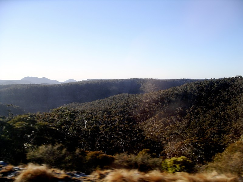 Morning sun in the Blue Mountains • Taken on the Indian Pacific railway.