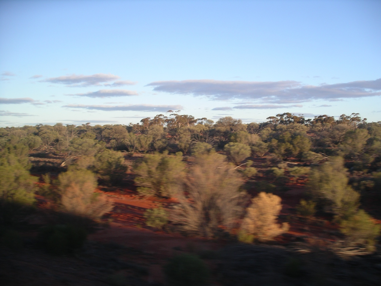 The Nullarbor Plain • Taken on the Indian Pacific Railway.