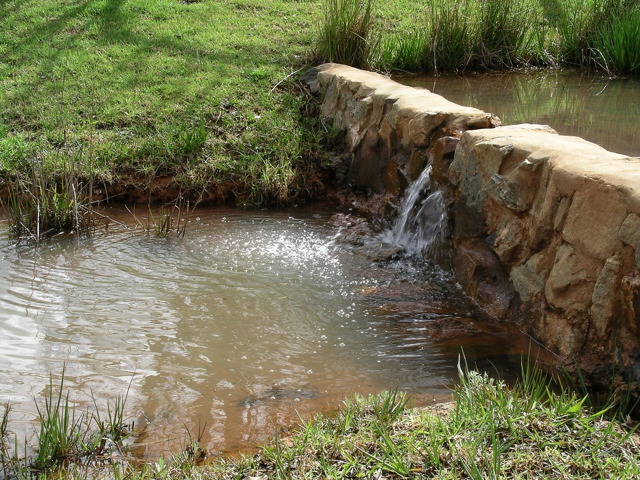 The Brook of Millbrook