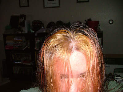 Hair color experimentations.  First step, bleach.
