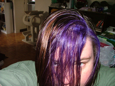 Hair color experimentations.  Second step, add purple.