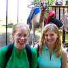 Katie, Becky, and a Large Camel