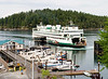 The ferry arriving in Friday Harbor.