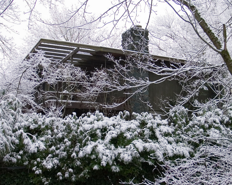 A house overlooking the ravine in Ravenna Park.
