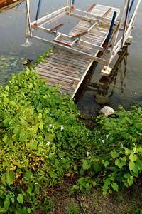Unused dock