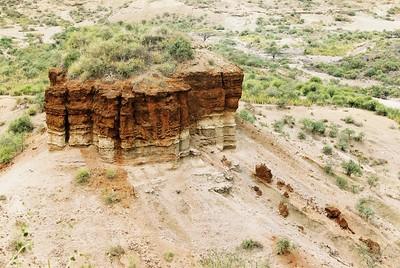 Oldupai Gorge strata  --Stuart Altmann