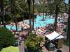 pool at the Flamingo