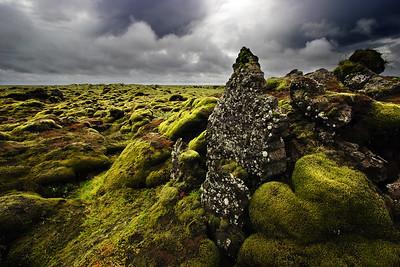 Week in Iceland