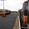 084 on the left with the Westport train and 080 on the right with the Ballina Train. Manulla Junction. Sun 01.04.05