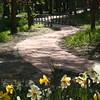 Warrior Walkway Spring Photo