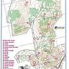 Full practice rogaine - Goorooyarroo Reserve