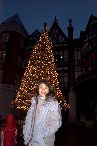 Christmas tree at chocolate factory