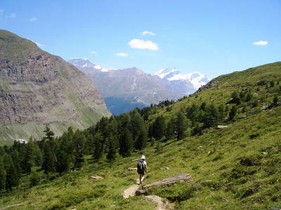The hike down from Day 4 of the Swiss Orienteering Week.