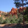 Southwest 2006-010