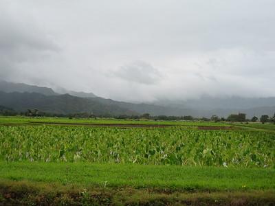 02.Kauai