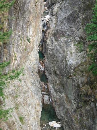 09.Cascades Roadtrip with Nala