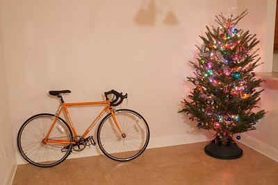 Two things I've never owned before: a christmas tree and a road bike